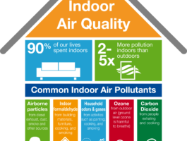 2017 Basf Indoor Air Quality Info Graphic